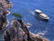 遊覧船(千貫松島)