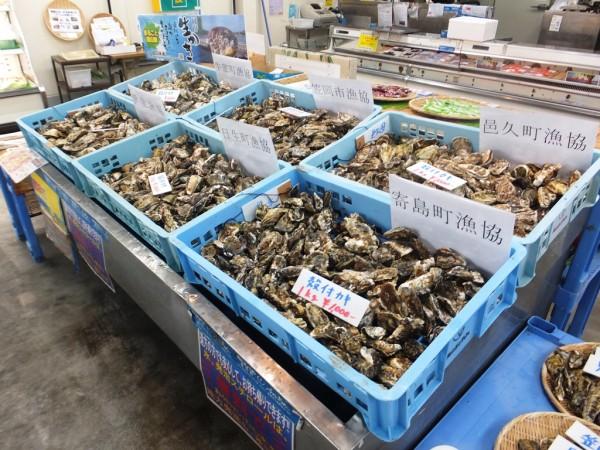 JF岡山漁連 ふゅ~ちゃ~・お買い物していただいたお客様にちょっぴりプレゼント