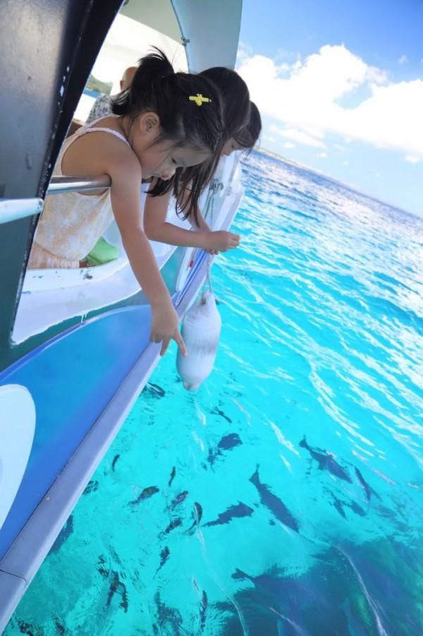 ブセナ海中公園・沖縄本島唯一の海中展望塔とクジラ型グラス底ボート施設観覧料10%OFF