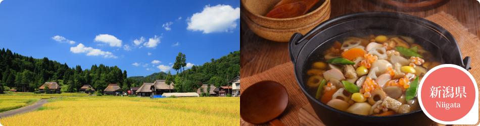 遊ぷらざ 得観光クーポンマークの施設がお得な観光クーポンを公開中です 新潟県