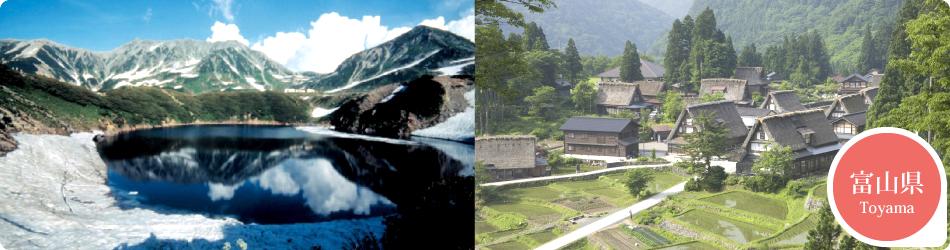 遊ぷらざ 得観光クーポンマークの施設がお得な観光クーポンを公開中です 富山県