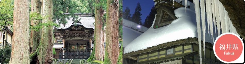 遊ぷらざ 得観光クーポンマークの施設がお得な観光クーポンを公開中です 福井県