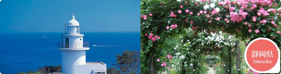 遊ぷらざ 得観光クーポンマークの施設がお得な観光クーポンを公開中です 静岡県