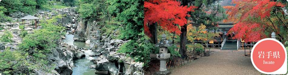遊ぷらざ 得観光クーポンマークの施設がお得な観光クーポンを公開中です 岩手県