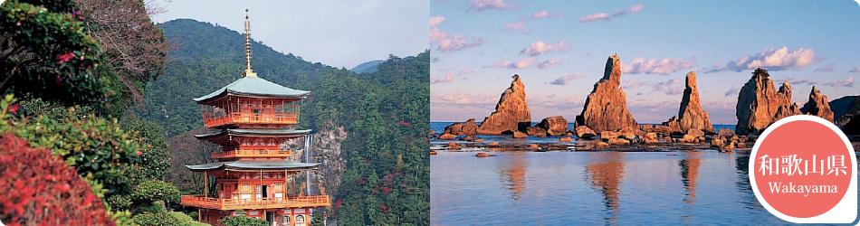 遊ぷらざ 得観光クーポンマークの施設がお得な観光クーポンを公開中です 和歌山県