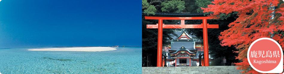 遊ぷらざ 得観光クーポンマークの施設がお得な観光クーポンを公開中です 鹿児島県