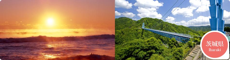 遊ぷらざ 得観光クーポンマークの施設がお得な観光クーポンを公開中です 茨城県