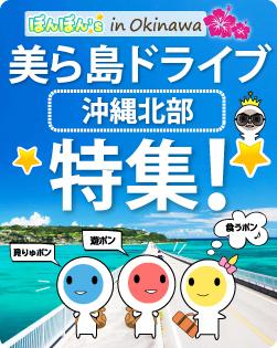 美ら島ドライブ沖縄北部特集