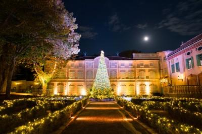 例年11月上旬~1月上旬は、ツリーやイルミネーションなどで園内をクリスマス仕様に模様替え
