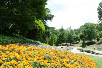 「フェアリーガーデン」では、四季折々の色とりどりの花々がお楽しみいただけます。