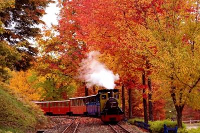 ロムニー鉄道と紅葉
