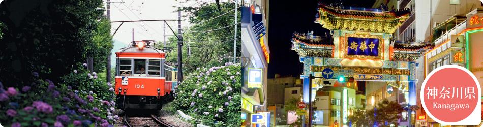 遊ぷらざ 得観光クーポンマークの施設がお得な観光クーポンを公開中です 神奈川県