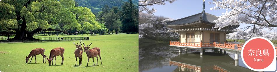 遊ぷらざ 得観光クーポンマークの施設がお得な観光クーポンを公開中です 奈良県