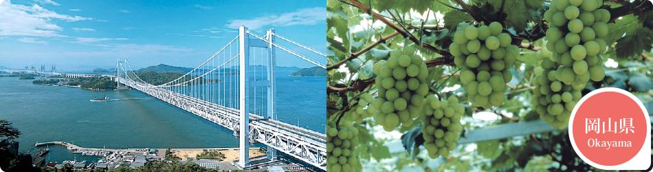 遊ぷらざ 得観光クーポンマークの施設がお得な観光クーポンを公開中です 岡山県
